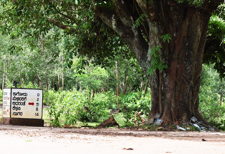 ಕಾಗೋಡು ಚಳವಳಿ @68: ವೈರುಧ್ಯದ ಹೊತ್ತಲ್ಲಿ ಕ್ರಾಂತಿಯ ಸ್ಮರಣೆ